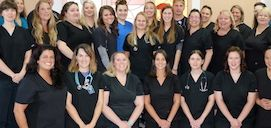 Meet the very talented staff<br />of Iowa Veterinary Specialties