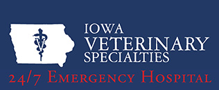 Iowa Veterinary Specialties