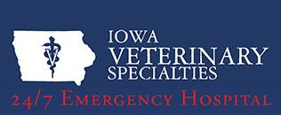 Feline Infectious Peritonitis | Iowa Veterinary Specialties